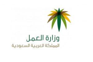 تسجيل الدخول على وزارة الموارد البشرية والتنمية الاجتماعية